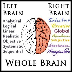 Left-Right-Whole Brain